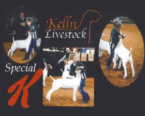 13-results-kelln_specialk_sales