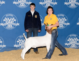 5-results-15_oye_darcywhitley_premiumsale_traditional
